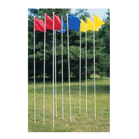 Directional Flag Set